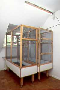 Zimmervoliere 1 / Indoor Aviary 1