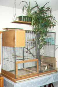 Zimmervoliere 2 / Indoor Aviary 2